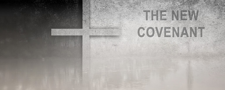The Indelible Work of the Spirit in the New Covenant